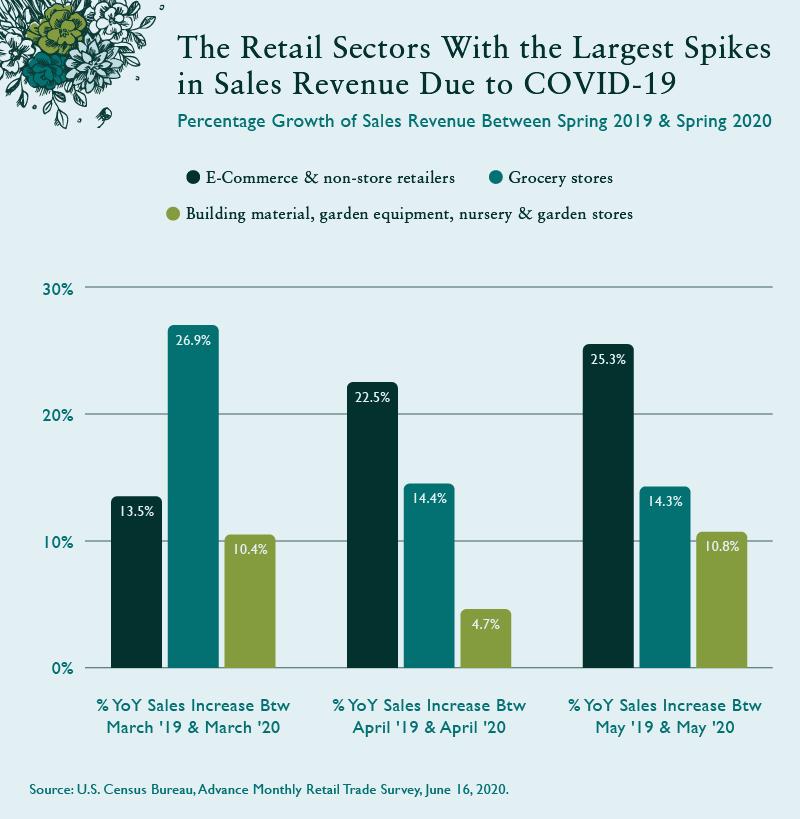 Sales Revenue during Covid-19